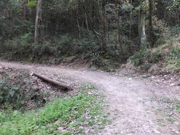 龍神谷の曲り角