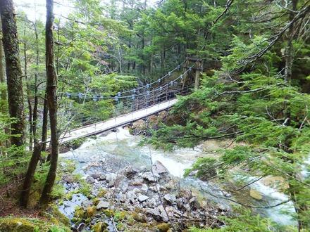 吊り橋の下にも小さな滝が