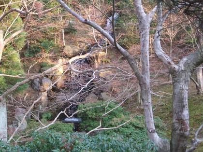 隣雲亭北側から雄滝を望む