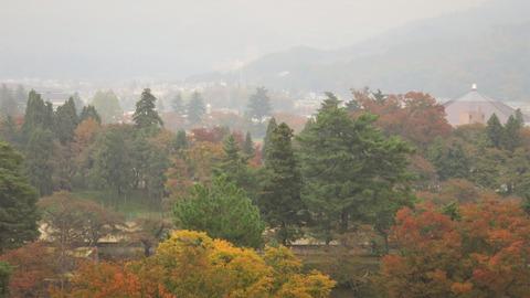 1 鶴ヶ城天守閣から城内の紅葉を見る