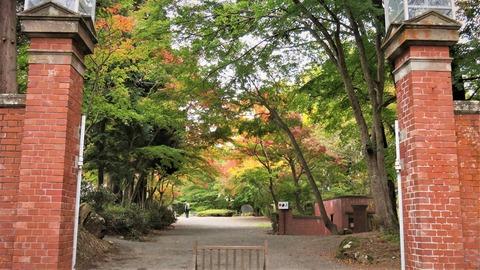 31 天鏡閣煉瓦門から邸内紅葉を見る