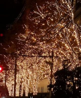 【クリスマス】ロームイルミネーション2018が始まりました