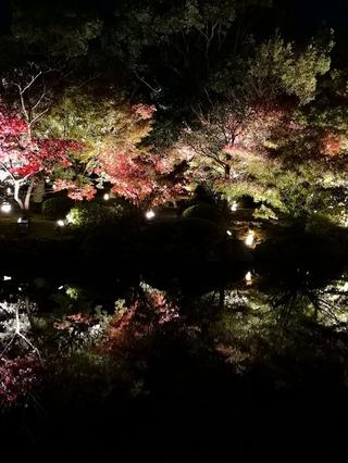 【2018】東寺秋期特別公開[紅葉ライトアップと夜間特別拝観]に行ってみた