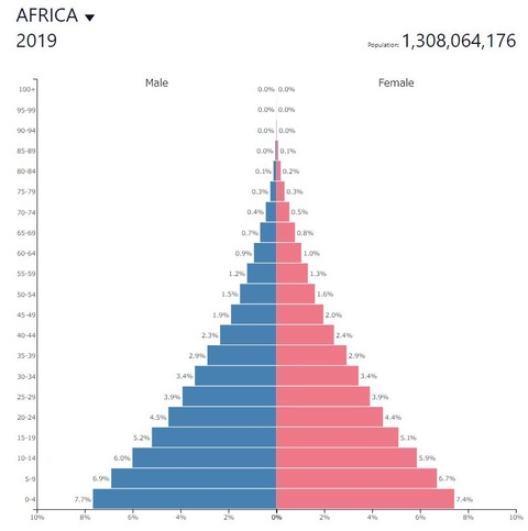2019populationpyramidafricancountries001
