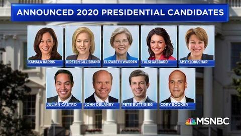 2020democraticpresidentialcandidates001
