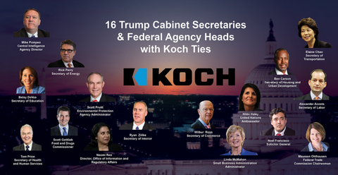 Koch-Cabinet-smaller-e1499255511125