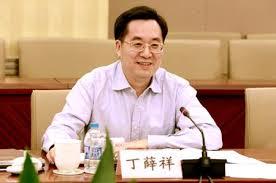 dingxuexiang001