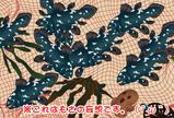 シーラカンス10匹(もささん)