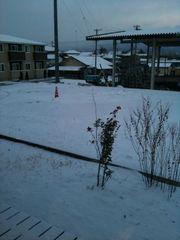 snow201001