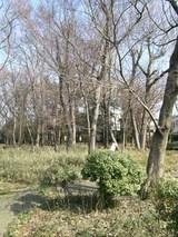 栗原緑地公園
