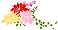 poinsettia20141128-icon2