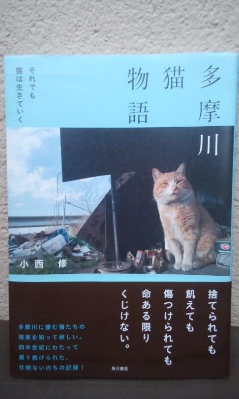 多摩川猫物語