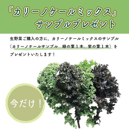 karinokeru20200114-1