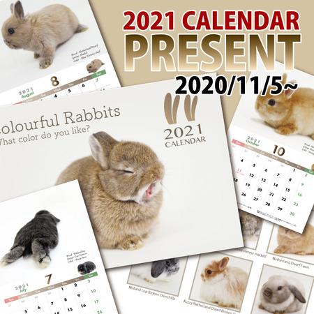2021calendarpresent-1