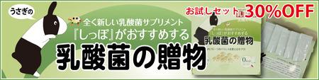 okurimono2017-10