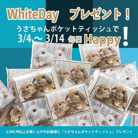 whiteday2021-3-1