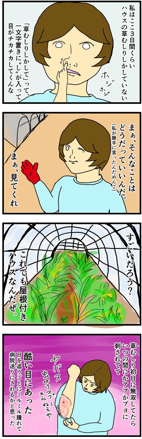 やぶ蚊バリア1
