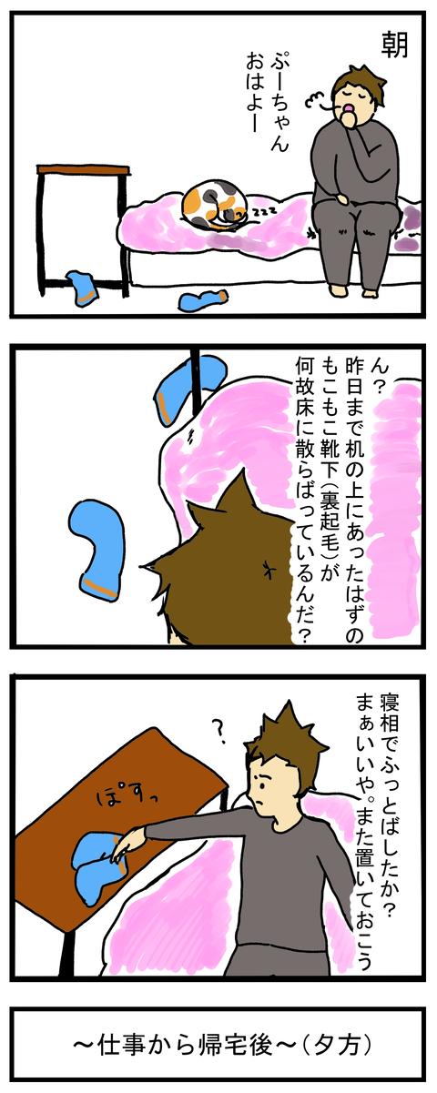ぷやがはこぶ靴下1