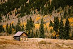 ド田舎の安い土地にプレハブ小屋を置いてひっそりと暮らしたい