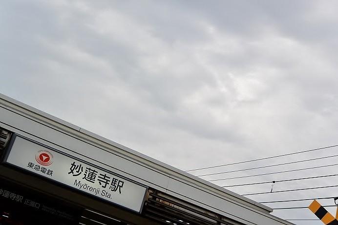 DSC_7250