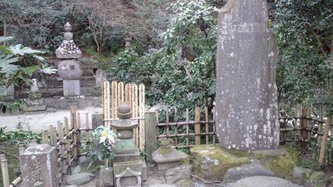 妙本寺18一幡墓