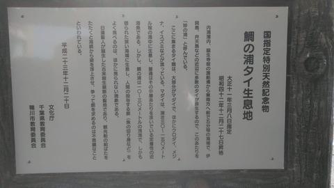 特別天然記念物掲示2