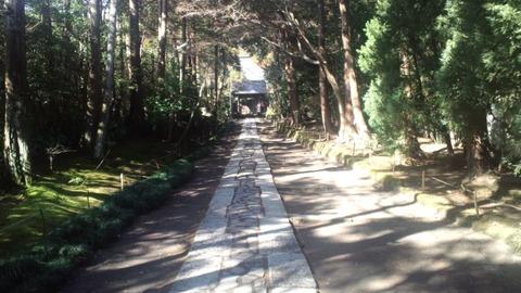 寿福寺11