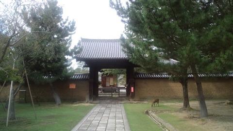 東大寺30勧学院