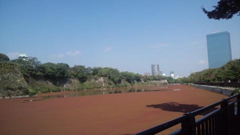 大阪城公園45