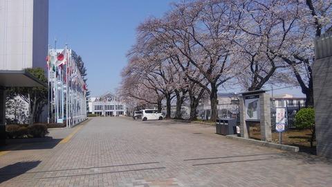 東京国際大学3