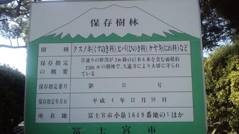 小泉久遠寺8楠