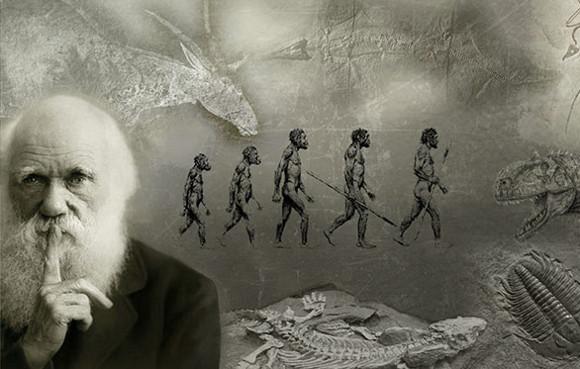 darwin-origine