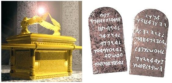 6561uo17