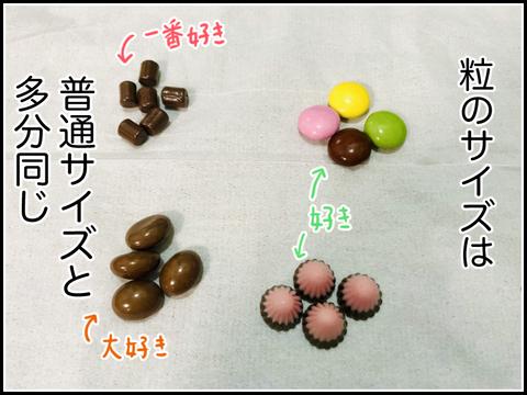 チョコのサイズ