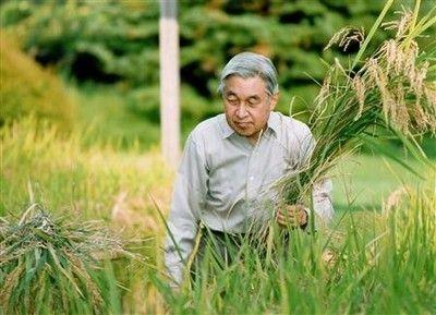 http://livedoor.blogimg.jp/hideo1274/imgs/8/8/889f5d18.jpg