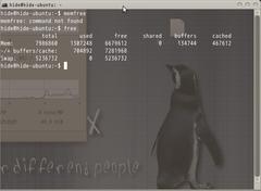 Screenshot-hide@hide-ubuntu- ~