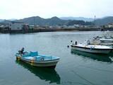 土佐久礼漁港