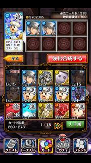 青キノコ養生4