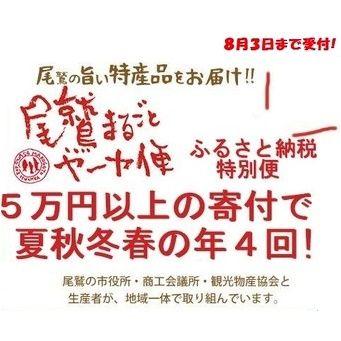 ふるさと納税4回-thumb-600xauto-911