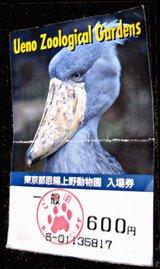 上野動物園入場券3