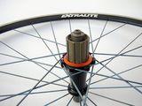 extralite wheelset ti
