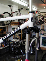 scout white front