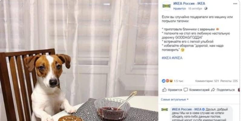 【海外】「私たちって犬?」イケアの広告が女性差別だとの批判を受け大炎上。同社が広告を削除し謝罪する羽目に。ロシア