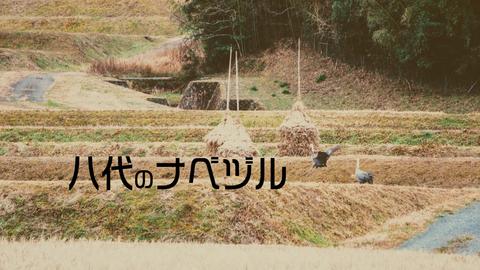 八代のナベヅル2019HD