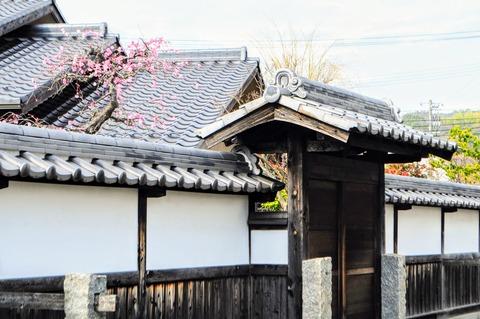 柳井白壁の町_0134