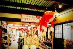 柳井白壁の町_きじや金魚0091