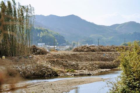 島田川沿い-29