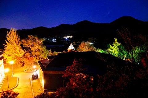 伊藤公記念公園ライトアップ-31