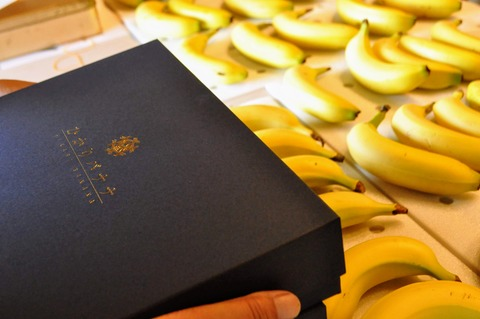 ひかりバナナ-22
