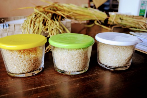 高村農園_玄米白米胚芽米